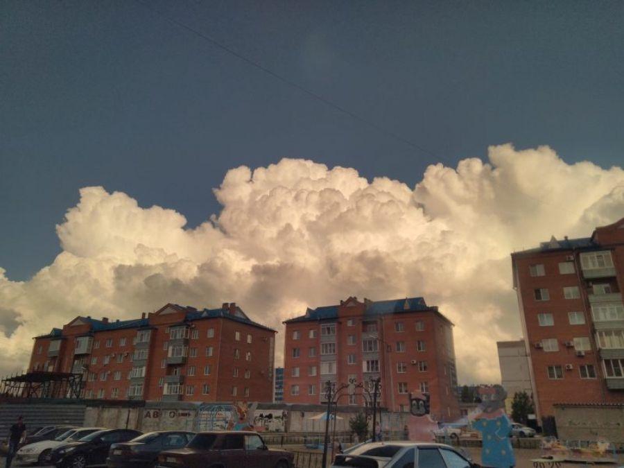 Фото: Аркадий Пенягин