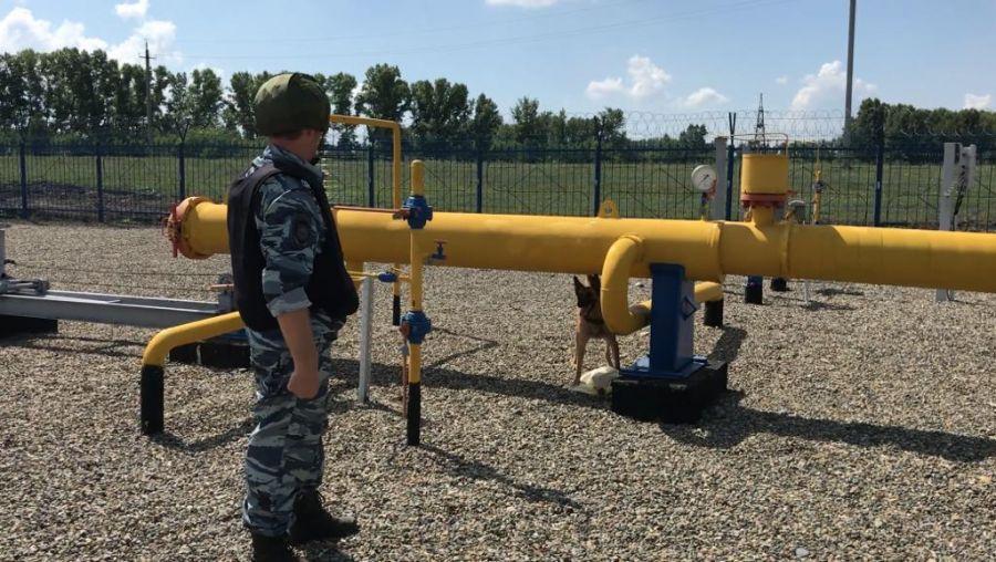 В селе Первомайское недалеко от Бийска обнаружено взрывное устройство