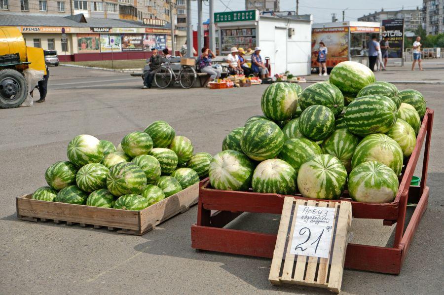 Сам сахарный: откуда в Бийск привозят арбузы и как выбрать самый вкусный