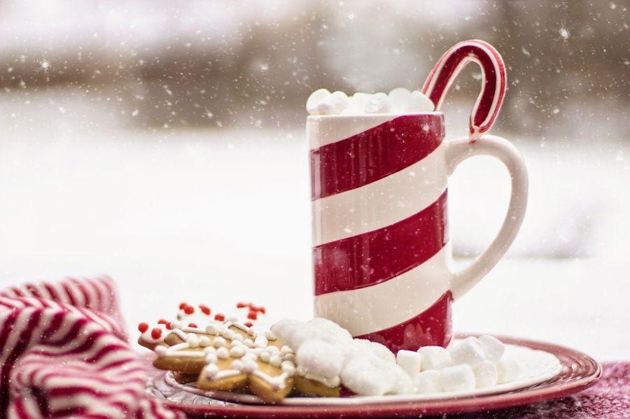 Как упоительны с какао вечера: готовим идеальный горячий шоколад