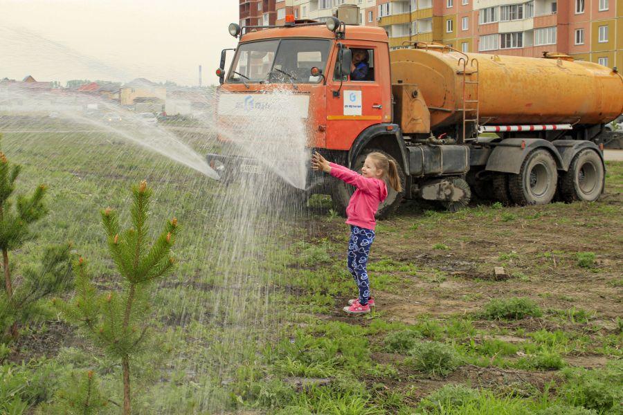 Больше сотни деревьев высадили по соседству с домами переменной этажности: Титова 252-252/2