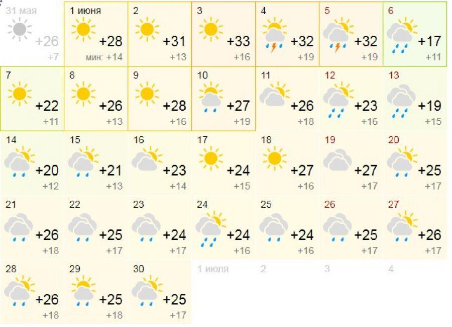 На максималках: первая неделя июня в Алтайском крае будет аномально жаркой