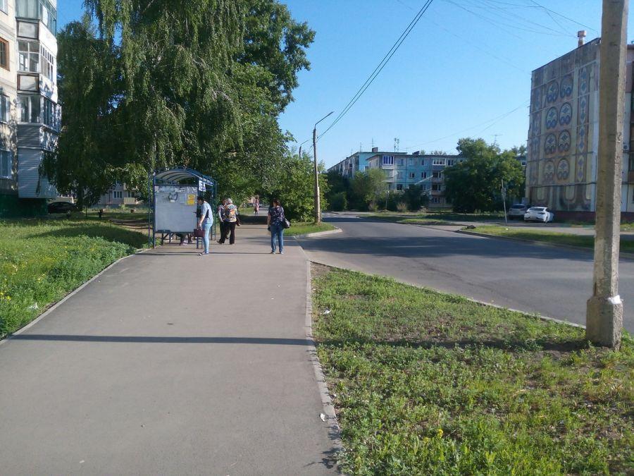 Из кустов: жители района Треста рискуют здоровьем, чтобы попасть в автобус