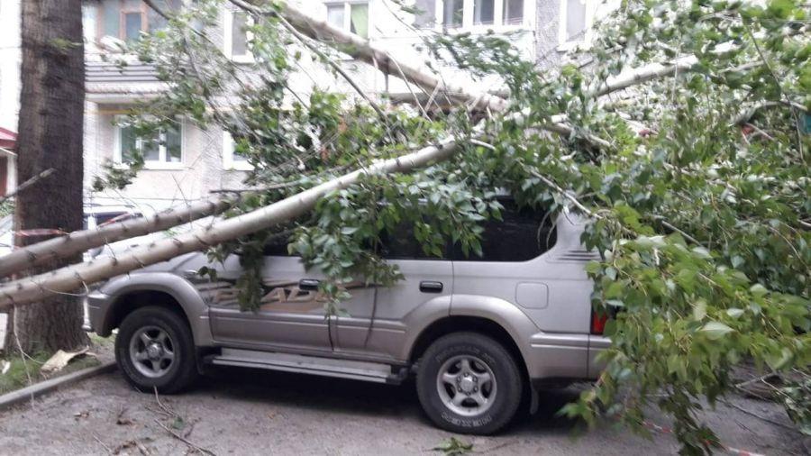 Непогода с ветром и градом прошлась по Барнаулу и Заринску вечером 6 июля