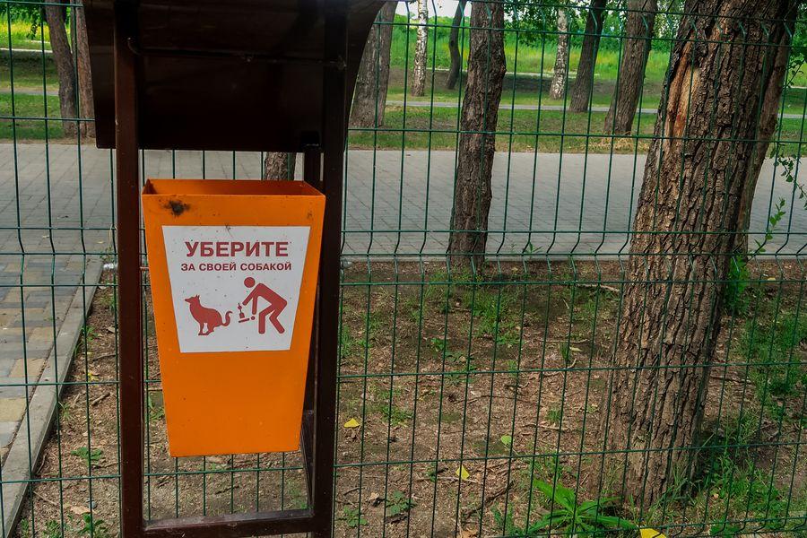 Единственная в городе «собачья» площадка мешает жильцам близлежащих домов