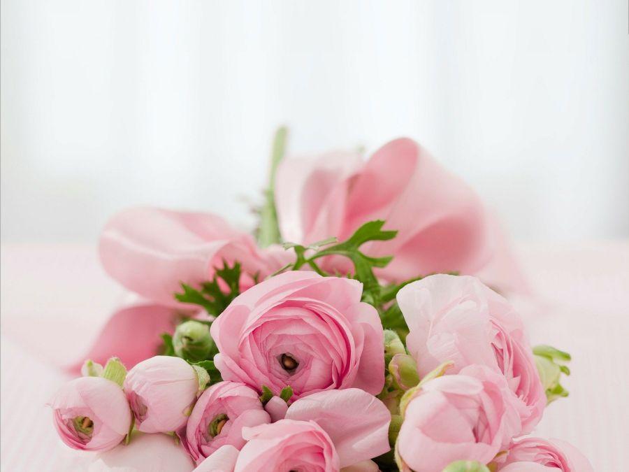 Как выбрать цветы: советы опытных флористов