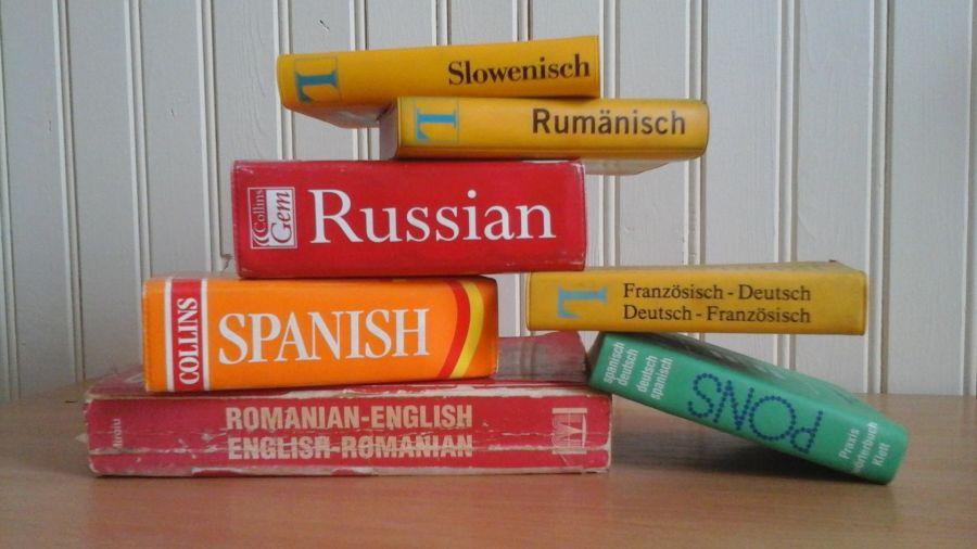 Шпрехен зе дойч: зачем бийчане изучают иностранный язык