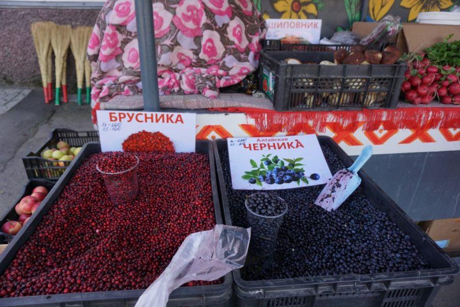 Собирайте мухоморы: бийчанам предлагают сдавать ягоды и грибы за деньги